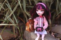 Bambola della ragazza che tiene una macchina fotografica e una borsa rosa all'aperto Immagini Stock Libere da Diritti