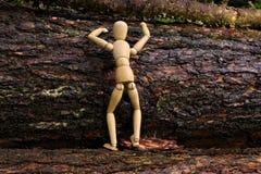 Bambola di legno che scala un albero Fotografia Stock Libera da Diritti