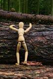 Bambola di legno che scala un albero Fotografie Stock