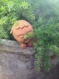 Bambola di nascondino Immagine Stock