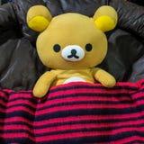 Bambola di Rilakkuma coperta dalla coperta rossa di nero barrata Fotografie Stock Libere da Diritti