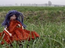 Bambola di straccio con capelli blu e un vestito rosso nell'erba con le gocce di rugiada immagine stock
