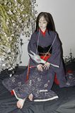 Bambola raccoglibile del giunto a sfera di OOAK da Otake Kyo Japan Immagini Stock Libere da Diritti