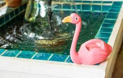 Bambola rosa del cigno disposta nel giardino posteriore immagine stock
