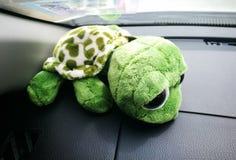 Bambola verde del tuttle sull'automobile anteriore immagini stock