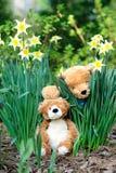 Bambole dell'orso in un giardino Immagini Stock