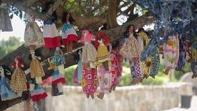 Bambole di voodoo su un albero video d archivio