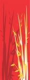 bamboo вал иллюстрации Стоковые Изображения