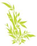 bamboo вал Стоковые Изображения