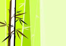 bamboo вектор Стоковое Фото