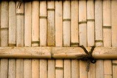 bamboo естественная стена Стоковые Изображения RF