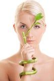 bamboo женщина завода Стоковые Фото