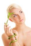 bamboo женщина завода Стоковые Изображения