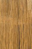 bamboo загородка Стоковое Изображение