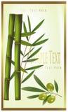 bamboo зеленая оливка ярлыка Стоковая Фотография