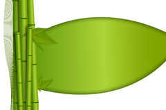 bamboo зеленые всходы листьев Стоковые Изображения