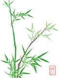 bamboo киец иллюстрация штока