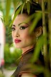 bamboo китайская модель Стоковая Фотография