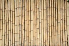 bamboo колчан Стоковое Фото