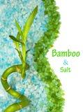 bamboo море соли Стоковая Фотография RF