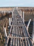 bamboo мост Стоковое Фото