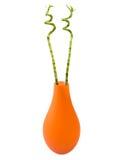 bamboo померанцовая ваза Стоковые Фотографии RF