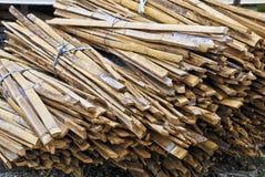 bamboo пук Стоковая Фотография RF