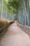 bamboo путь японии kyoto пущи Стоковые Фотографии RF