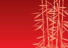 bamboo пуща Стоковые Фото