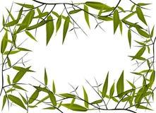 bamboo рамка Стоковая Фотография RF