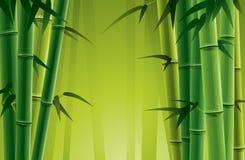 bamboo роща иллюстрация вектора