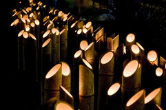 bamboo свет Стоковая Фотография RF