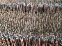 bamboo силовая трубка Стоковые Фото
