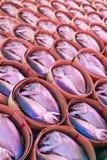 bamboo скумбрия рыб корзины Стоковые Изображения