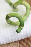 bamboo спа конструкции Стоковые Изображения RF
