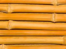bamboo стволы дерева Стоковая Фотография