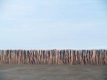 bamboo стена Стоковые Изображения