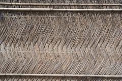 bamboo стена Стоковое Изображение RF