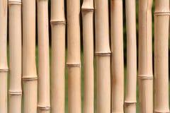 bamboo стена Стоковые Изображения RF