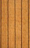 bamboo текстура Стоковые Изображения