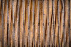 bamboo текстура Стоковые Изображения RF