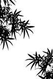 bamboo тень s иллюстрация штока