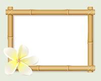 bamboo шток иллюстрации рамки Стоковые Фото