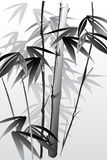 Bamboo 05 Royalty Free Stock Photos