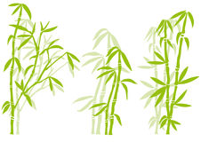 Bamboo. Tree silhouettes, vector background