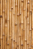 Bamboo. Background texture with columns of wood Stock Photos