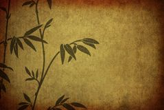 Bamboo. Branches bamboo on old paper Stock Images