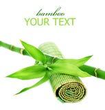 Bamboo Stock Photography