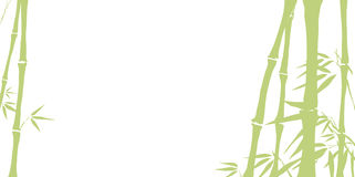 Bamboo. On sundown, vector illustration vector illustration