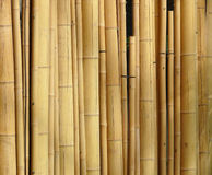Bamboo. Stick covering a wall Stock Photos